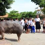 Phnom-Penh-28
